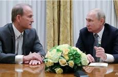 Tổng thống Putin: Nga sẵn sàng khôi phục quan hệ với Ukraine