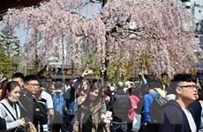 Lượng khách Hàn Quốc đặt tour du lịch Nhật Bản giảm 50%
