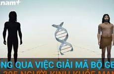 Giải mã bộ gene của người Việt - cánh cửa mở ra quá khứ, tương lai