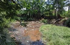 Đắk Lắk kiểm tra cơ sở chăn nuôi gây ô nhiễm theo phản ánh của TTXVN
