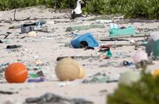 Kêu gọi giải cứu hòn đảo di sản thế giới khỏi rác thải nhựa