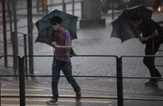 Trung Quốc: Bão Wipha đổ bộ lần thứ hai vào đất liền Quảng Đông