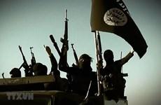 Lầu Năm Góc: IS lợi dụng việc Mỹ rút quân để hồi sinh ở Syria, Iraq