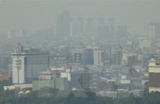 ASEAN cần thúc đẩy hợp tác sử dụng bền vững than bùn, giảm khói mù