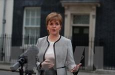 Scotland sẽ không loại trừ lựa chọn nào nhằm ngăn chặn Brexit