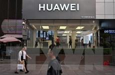 Mỹ nêu lý do hoãn lệnh cấm với Tập đoàn Huawei của Trung Quốc