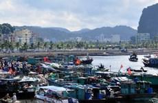 [Video] Bão số 4 có thể đi vào đất liền từ Thanh Hóa đến Quảng Bình