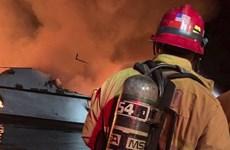 Mỹ: Cháy tàu ngoài khơi California, hàng chục người mắc kẹt