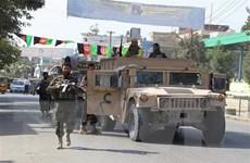 Afghnistan đề nghị Mỹ chia sẻ về dự thảo thỏa thuận với Taliban