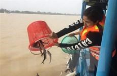 Lấy ý kiến lập Quy hoạch bảo vệ và khai thác nguồn lợi thủy sản