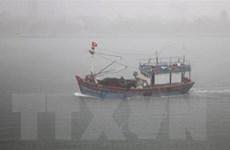 [Video] Đã cứu được 5 trong số 7 thuyền viên tàu cá bị chìm