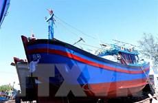 Bình Định không cho phép đóng mới tàu cá có chiều dài dưới 6m