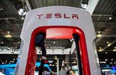 Doanh nghiệp Brazil đàm phán cung cấp pin lithium cho Tesla