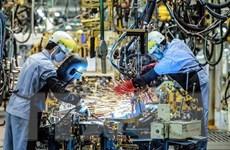 Reuters: Doanh nghiệp Nhật Bản thận trọng trong các kế hoạch đầu tư
