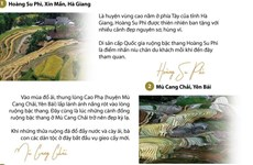 [Infographics] Mùa thu vàng tuyệt đẹp trên vùng rẻo cao Lào Cai