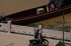 Quảng Ninh sẽ lắp hàng rào chống buôn lậu một số nơi dọc bờ biên giới