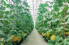 Tỉnh Hà Nam tích cực kêu gọi đầu tư từ doanh nghiệp Hàn Quốc