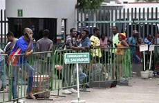 Mỹ lên kế hoạch thu thập ADN của người di cư không có giấy tờ