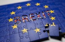 Phần Lan: Anh phải đưa ra giải pháp Brexit trong vòng một tuần