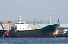 Một thủy thủ Việt Nam được cứu trong vụ chìm tàu trên vịnh Tokyo