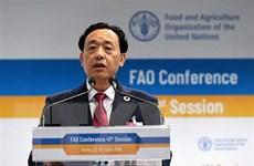FAO kêu gọi cung cấp chế độ ăn lành mạnh cho tất cả mọi người