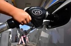Dự trữ dầu thô của Mỹ tăng mạnh hạn chế đà đi lên của giá dầu