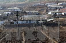 FAO dự báo tình trạng thiếu lương thực xấu đi tại Triều Tiên
