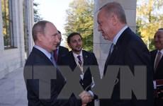 Tổng thư ký NATO: Lệnh ngừng bắn ở Syria tạo ra cơ hội hòa bình