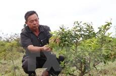 Người truyền cảm hứng cho nông dân hướng đến sản xuất nông nghiệp sạch