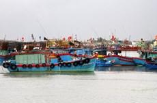 Các tỉnh từ Đà Nẵng đến Bà Rịa-Vũng Tàu cần ứng phó với áp thấp