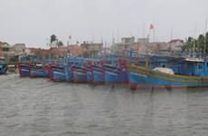 Bão số 5 mạnh lên, sắp đi vào đất liền từ Quảng Ngãi đến Khánh Hòa