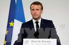 Tổng thống Pháp Macron: NATO đang trải qua tình trạng tê liệt