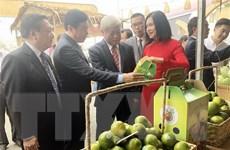 Giới thiệu nhiều mặt hàng đặc sản Đồng Tháp tại Thành phố Hồ Chí Minh