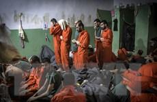 Thổ Nhĩ Kỳ bắt giữ nhân vật quan trọng của tổ chức IS ở Syria