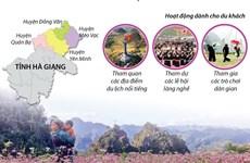 [Infographics] Lễ hội hoa tam giác mạch Hà Giang: Sắc màu hoa đá