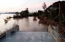 An Giang: Sạt lở đường dẫn lên cầu, nhiều tài sản chìm xuống kênh