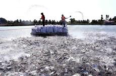 Nghị quyết lập đoàn giám sát thực hiện FTA mà Việt Nam là thành viên