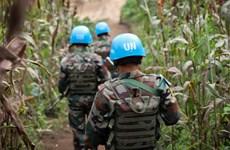 LHQ điều tra về cái chết của người biểu tình ở CHDC Congo