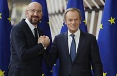 """Tân Chủ tịch Hội đồng châu Âu đề cao sự quyết đoán của """"lục địa Già''"""