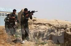 Đức kêu gọi Afghanistan thể hiện vai trò trong đàm phán với Taliban