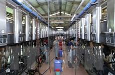 Triển vọng phát triển cho ngành công nghiệp chế biến sữa Việt Nam