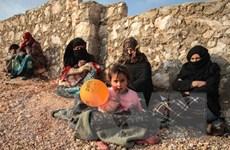 SOHR cáo buộc Nga không kích Syria khiến nhiều dân thường thiệt mạng