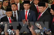 Thấy gì từ chiến lược lập chính phủ điện tử của Indonesia?