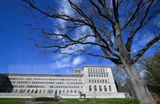 Khủng hoảng WTO: Đồng hồ ''cải cách'' đã điểm