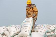 Nhập khẩu đậu tương của Trung Quốc tăng mạnh trong tháng 11