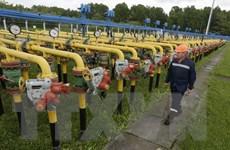 Nga và Ukraine nhất trí từ bỏ yêu sách qua lại về vận chuyển khí đốt