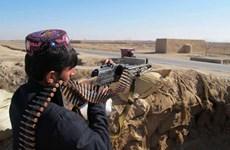 Dân quân địa phương giao tranh dữ dội với Taliban, 17 người tử vong