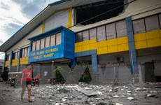 Động đất mạnh 5,2 độ làm rung chuyển miền Nam Philippines