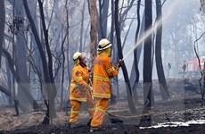 Australia lập quỹ khắc phục hậu quả cháy rừng trị giá 1,5 tỷ USD