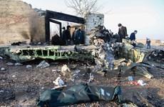 Tổng thống Ukraine rút ngắn chuyến công du Oman sau vụ rơi máy bay
